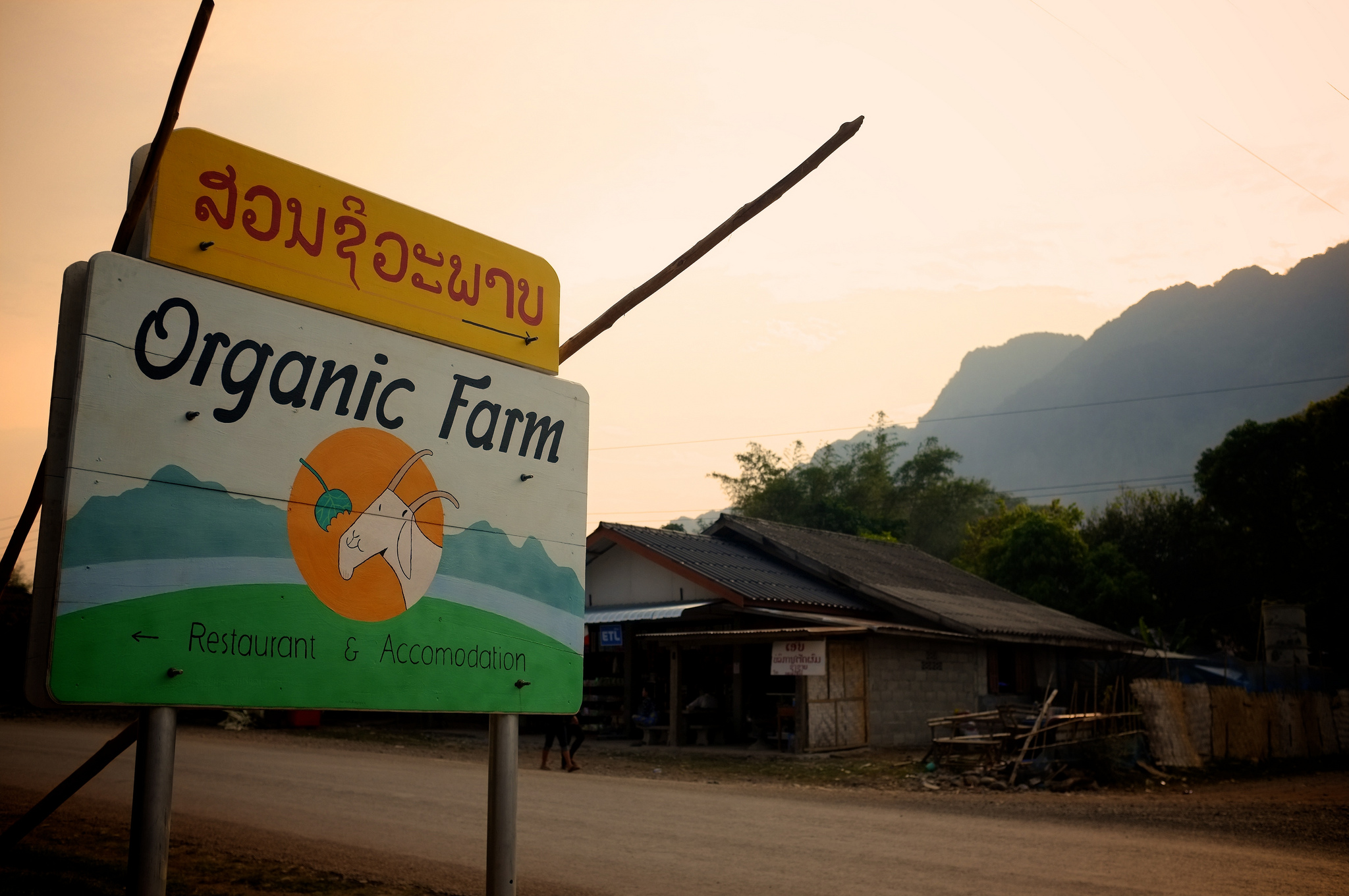 organic farm vang vieng